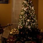 2010_Christmas_ (10)